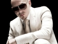 pitbull-news-article81313-jpeg