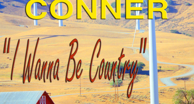 New Country Line Dance(I WANNA BE COUNTRY)...